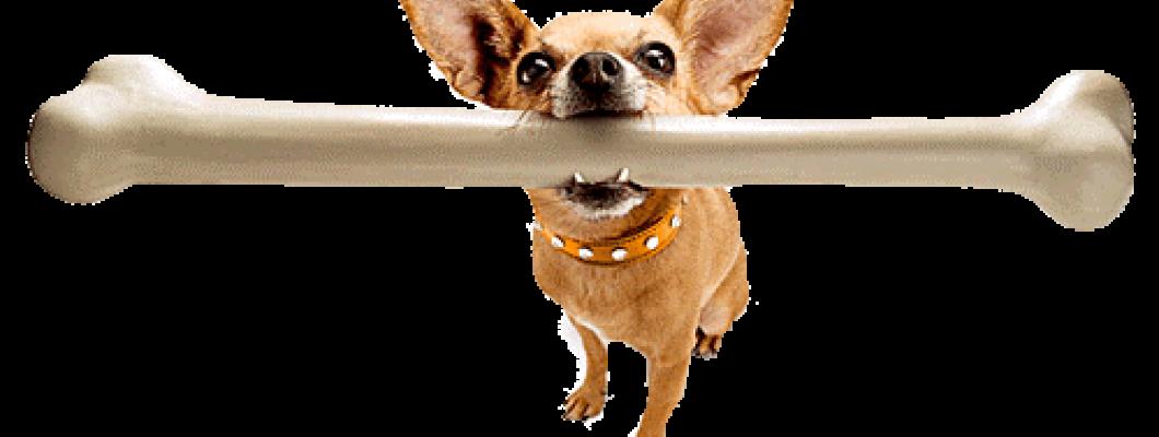 Hondenbotten of Kluiven?